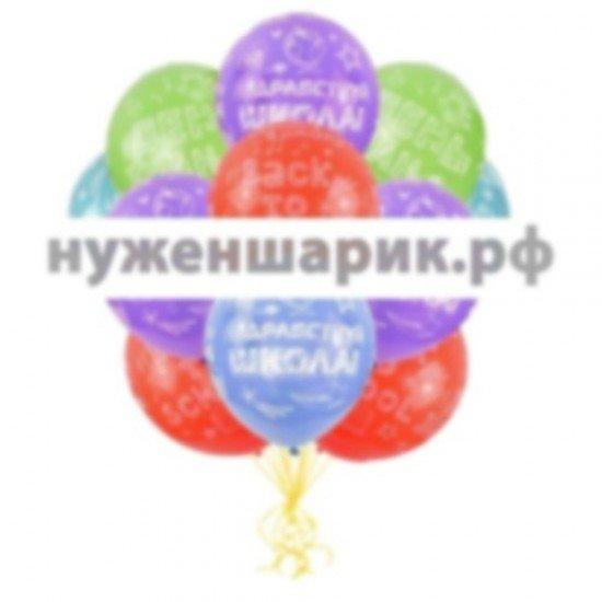 Облако воздушных шаров Здравствуй школа!