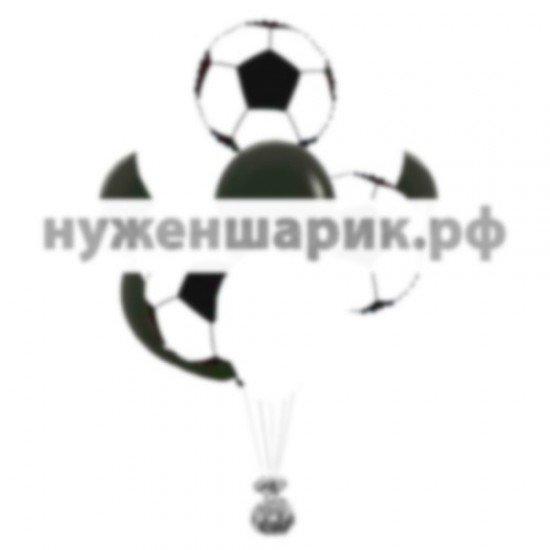 Связка из воздушных шаров Болельщик