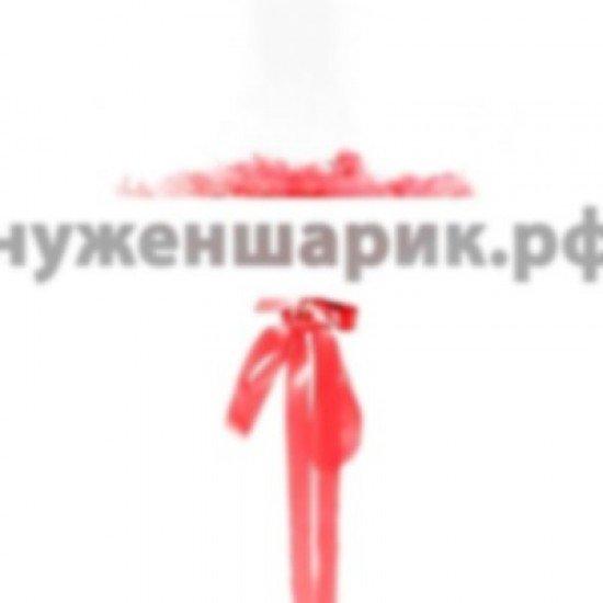 Прозрачный шар Bubble с Красными перьями, 46 см